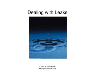 Dealing with Leaks