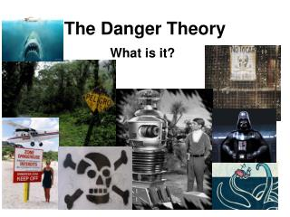 The Danger Theory