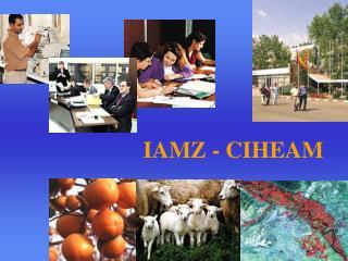 IAMZ - CIHEAM