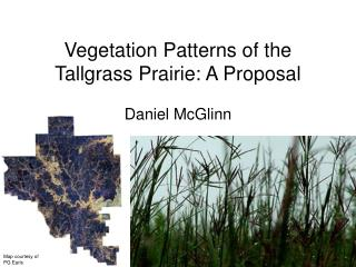 Vegetation Patterns of the Tallgrass Prairie: A Proposal