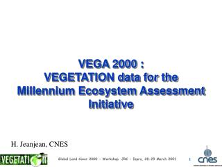 VEGA 2000 : VEGETATION data for the  Millennium Ecosystem Assessment Initiative