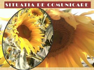SITUATIA DE COMUNICARE