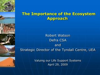 The Importance of the Ecosystem Approach