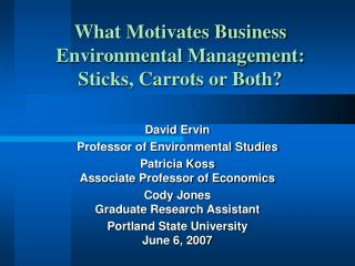 What Motivates Business Environmental Management:  Sticks, Carrots or Both?