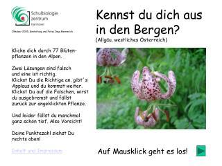 Klicke dich durch 77 Blüten- pflanzen in den Alpen.  Zwei Lösungen sind falsch