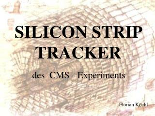 SILICON STRIP TRACKER