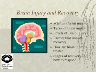 Brain Injury and Recovery