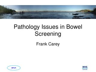 Pathology Issues in Bowel Screening