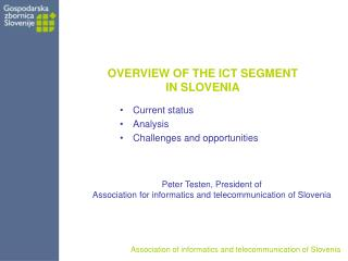 OVERVIEW OF THE ICT SEGMENT  IN SLOVENIA