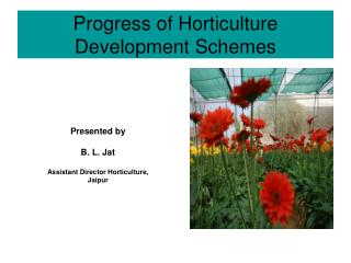 Progress of Horticulture Development Schemes