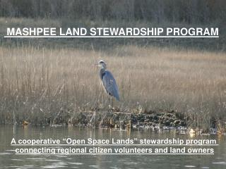 MASHPEE LAND STEWARDSHIP PROGRAM