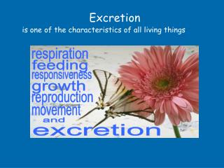 Excretion  is one of the characteristics of all living things