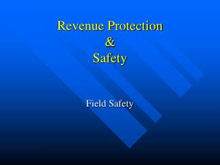 Revenue Protection & Safety