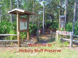 Welcome to  Hickory Bluff Preserve