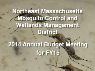 Northeast Massachusetts Mosquito Control and Wetlands Management District