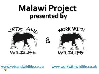 vetsandwildlife.co.za workwithwildlife.co.uk