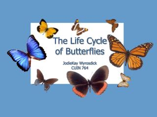 The Life Cycle of Butterflies JodieKay Wyrosdick CUIN 764
