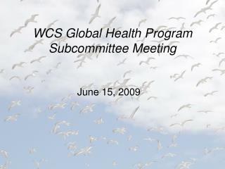 WCS Global Health Program Subcommittee Meeting