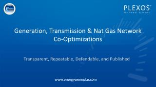 Generation, Transmission & Nat Gas Network Co-Optimizations