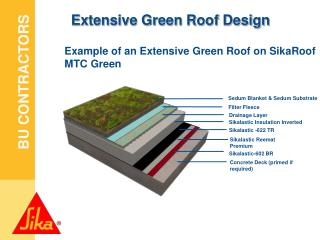 Extensive Green Roof Design