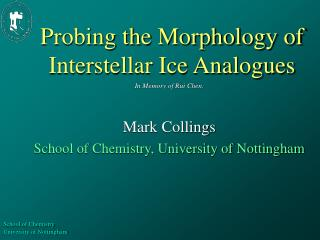 Probing the Morphology of Interstellar Ice Analogues