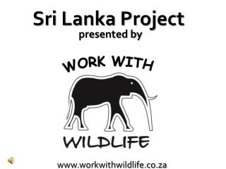 workwithwildlife.co.za