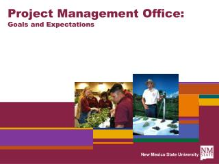 Project Management Office: Goals and Expectations