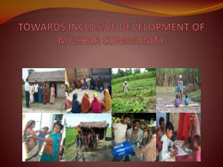 TOWARDS INCLUSIVE DEVELOPMENT OF MUSHAR COMMUNITY