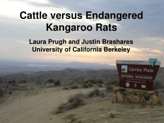 Cattle versus Endangered Kangaroo Rats