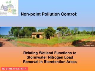 Relating Wetland Functions to Stormwater Nitrogen Load Removal in Bioretention Areas