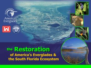 of America's Everglades &   the South Florida Ecosystem