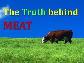 The  Truth behind   MEAT