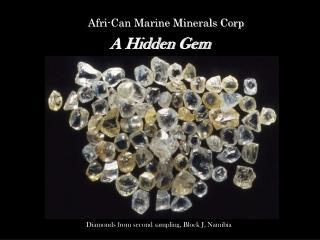 Afri-Can Marine Minerals Corp