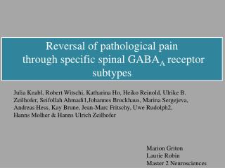 Reversal of pathological  pain through specific  spinal  GABA A receptor subtypes