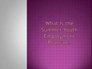 What Is the Summer Youth Employment Program?