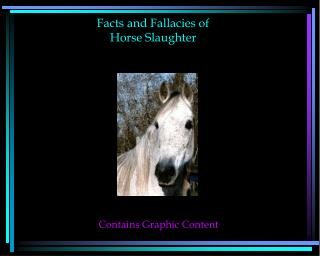 Facts and Fallacies of  Horse Slaughter