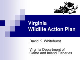 Virginia Wildlife Action Plan