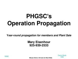 PHGSC's Operation Propagation Y ear-round propagation for members and Plant Sale