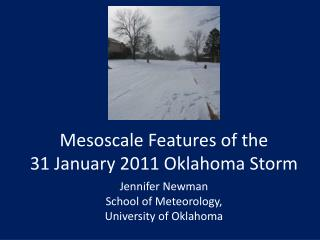 Mesoscale Features of the  31 January 2011 Oklahoma Storm