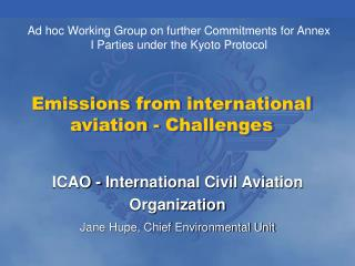 Emissions from international aviation - Challenges