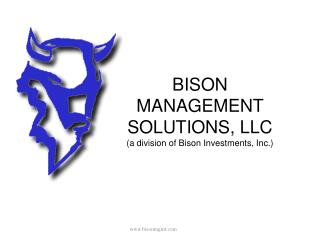 BISON  MANAGEMENT  SOLUTIONS, LLC (a division of Bison Investments, Inc.)