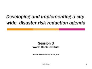 Developing and implementing a city-wide  disaster risk reduction agenda