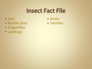 Insect Fact File
