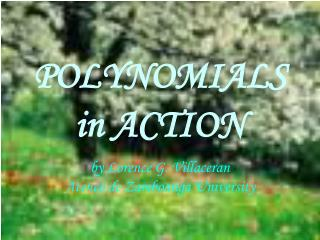 POLYNOMIALS in ACTION