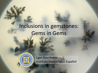 Inclusions in gemstones: Gems in Gems
