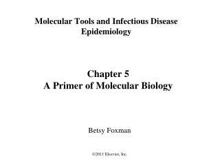 Chapter 5 A Primer of Molecular Biology