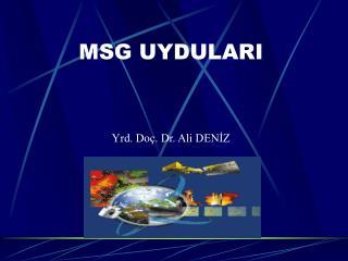 MSG UYDULARI