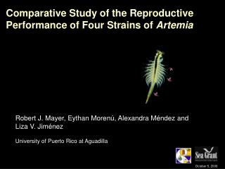 Comparative Study of the Reproductive Performance of Four Strains of  Artemia