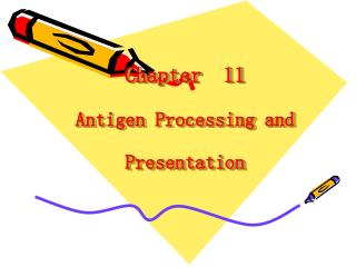 Chapter  11   Antigen Processing and Presentation