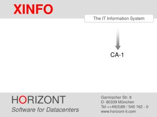 The IT Information System